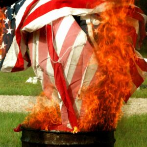 Burning the flag is seen as more dignified than simply throwing it away